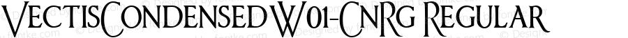 VectisCondensedW01-CnRg Regular Version 1.00