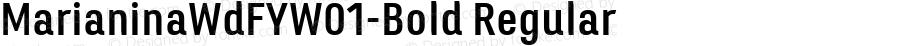 MarianinaWdFYW01-Bold Regular Version 1.00