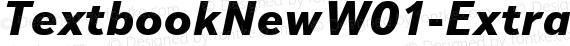 TextbookNewW01-ExtraBdItal Regular preview image