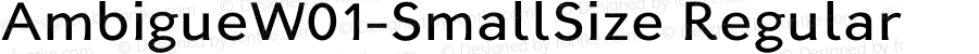 AmbigueW01-SmallSize Regular Version 1.02