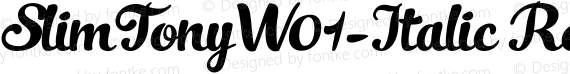 SlimTonyW01-Italic Regular preview image