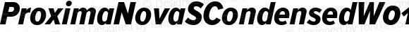ProximaNovaSCondensedW01SC-XboldIt Regular Version 2.015