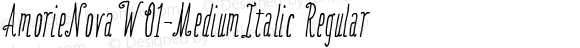 AmorieNovaW01-MediumItalic Regular Version 1.00