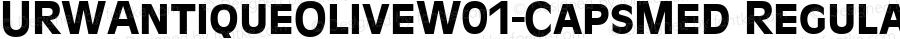 URWAntiqueOliveW01-CapsMed Regular Version 1.1