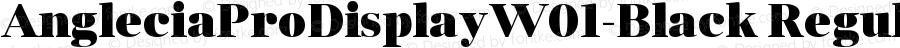 AngleciaProDisplayW01-Black Regular Version 1.00
