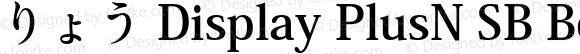 りょう Display PlusN SB Bold Version 1.00