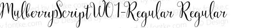 MulberryScriptW01-Regular Regular preview image