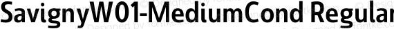 SavignyW01-MediumCond Regular preview image