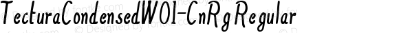 TecturaCondensedW01-CnRg Regular Version 1.10