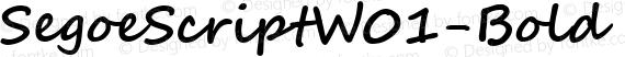SegoeScriptW01-Bold Regular preview image