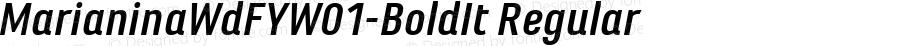 MarianinaWdFYW01-BoldIt Regular Version 1.00