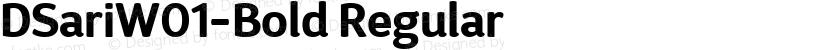 DSariW01-Bold Regular Preview Image