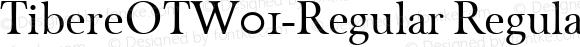TibereOTW01-Regular Regular Version 7.504