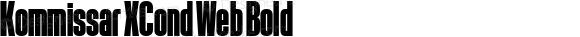 Kommissar XCond Web Bold