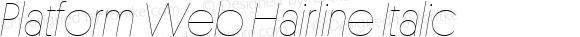 Platform Web Hairline Italic