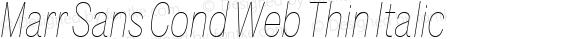 Marr Sans Cond Web Thin Italic