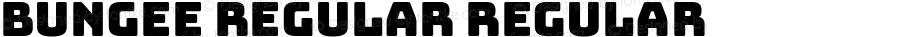 Bungee Regular Regular Version 1.000;PS 1.0;hotconv 1.0.72;makeotf.lib2.5.5900