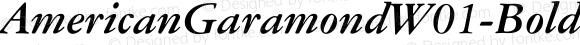 AmericanGaramondW01-BoldIt Regular Version 1.00