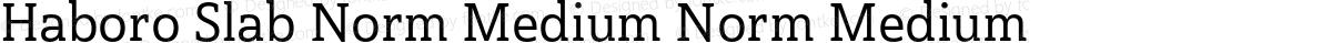 Haboro Slab Norm Medium Norm Medium