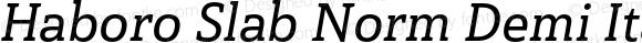 Haboro Slab Norm Demi Italic Norm Demi Italic