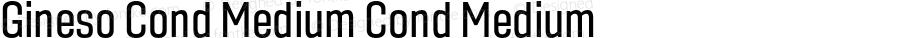 Gineso Cond Medium Cond Medium Version 1.000