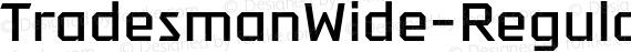 TradesmanWide-Regular Regular preview image