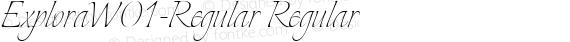ExploraW01-Regular Regular preview image