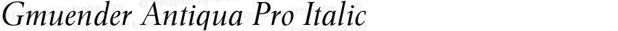 Gmuender Antiqua Pro Italic Version 1.0