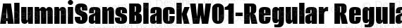 AlumniSansBlackW01-Regular Regular preview image