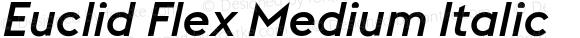 Euclid Flex Medium Italic