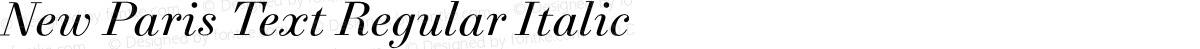 New Paris Text Regular Italic