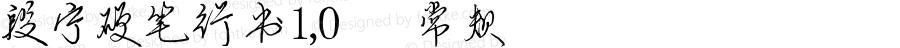 段宁硬笔行书1,0 常规 Version 1.00 June 18, 2016, initial release