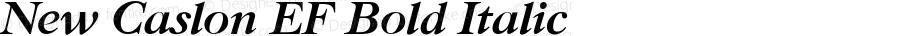 NewCaslonBEF-BoldItalic
