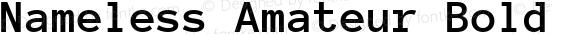 Nameless Amateur Bold Version 1.002