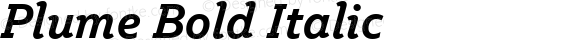 Plume Bold Italic