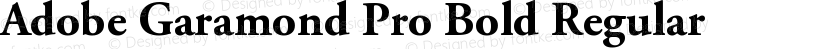 Adobe Garamond Pro Bold Regular Preview Image