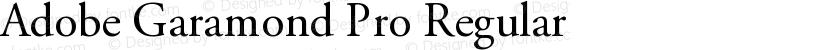 Adobe Garamond Pro Regular Preview Image