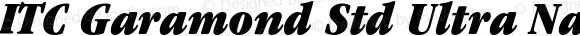 ITC Garamond Std Ultra Narrow Italic