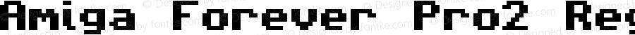 Amiga Forever Pro2 Regular 1.01
