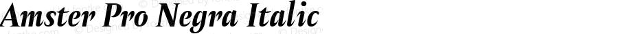 Amster Pro Negra Italic Version 1.000;PS 001.000;hotconv 1.0.70;makeotf.lib2.5.58329