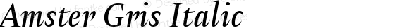 Amster Gris Italic Version 1.000;PS 001.000;hotconv 1.0.70;makeotf.lib2.5.58329