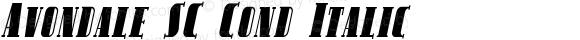 Avondale SC Cond Italic