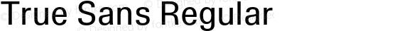 True Sans Regular