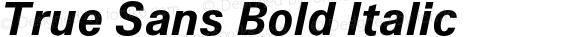True Sans Bold Italic