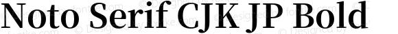 Noto Serif CJK JP Bold