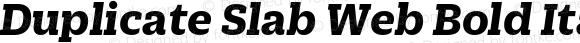 Duplicate Slab Web Bold Italic