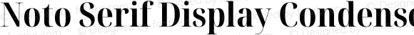 Noto Serif Display Condensed Bold
