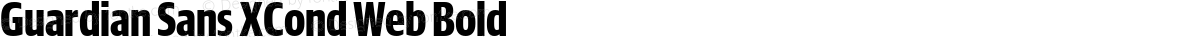 Guardian Sans XCond Web Bold