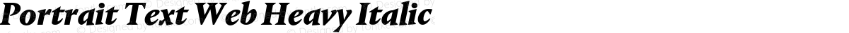 Portrait Text Web Heavy Italic