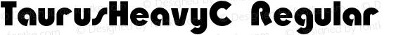 TaurusHeavyC Regular